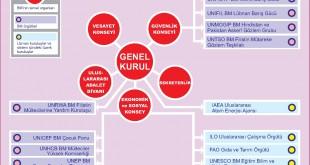 Birleşmiş Milletler Teşkilatı Şeması